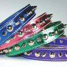 Metallic Signature Leather Spike & Stud Collar