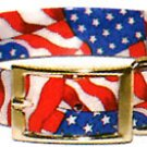 USA Sunglo Collar