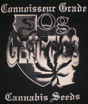 OG Genetics T-shirt Logo Blk/Brn New!