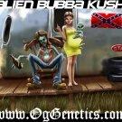 OG Genetics T-shirt Alien Bubba Blk/Wht/Colors New!