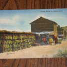 Postcard Tobacco Barn curing tobaccoland vintage PC