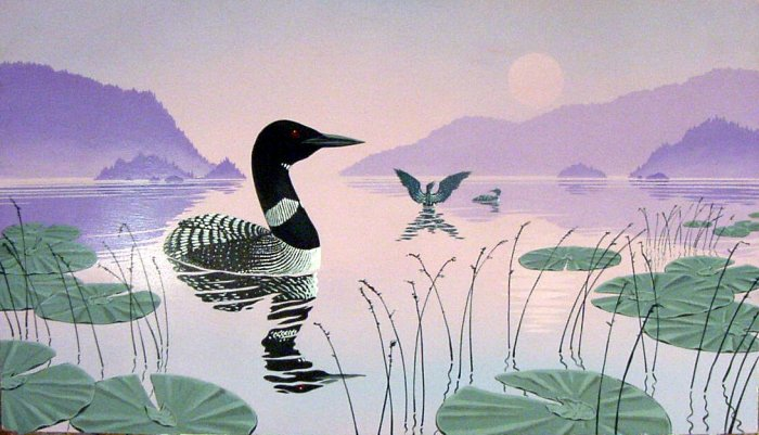 Loon On Calm Waters**Original Painting**Signed