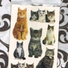 NEW pack life like cat stickers