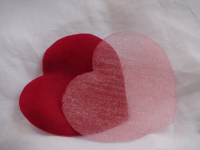1000 Red Heart Silk Rose Petals Weddings Crafts (Large)