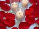 1000 Red Silk Rose Petals Weddings Crafts (Large)