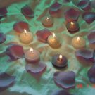 1000 Mauve Silk Rose Petals Weddings Crafts (Large)