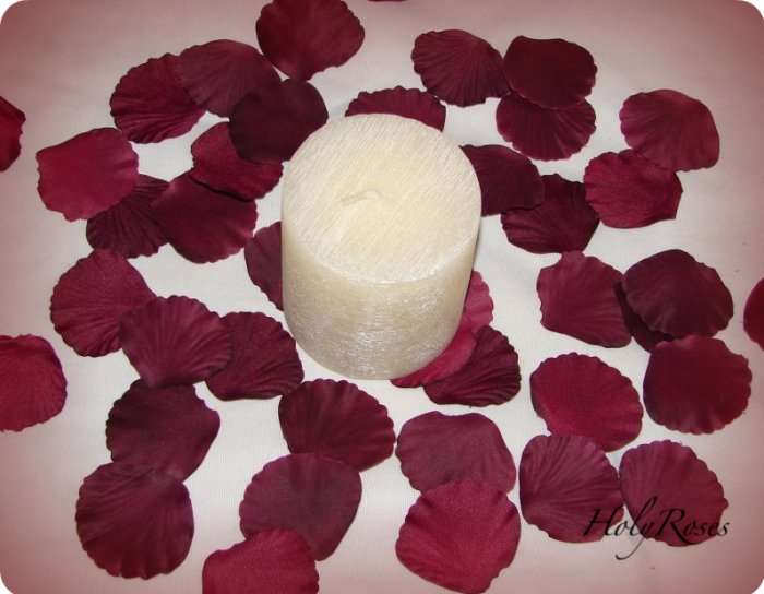 100 Burgundy Silk Rose Petals Weddings Crafts (Small)