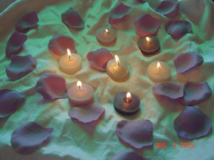 250 Mauve Silk Rose Petals Weddings Crafts (Large)