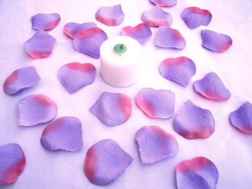 250 Lavender - Pink Two Tone Silk Rose Petals Weddings Crafts (Large)
