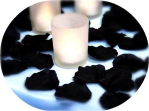 1000 Black Silk Rose Petals Weddings Crafts (Large)