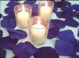 500 Blue Silk Rose Petals Weddings Crafts (Large)