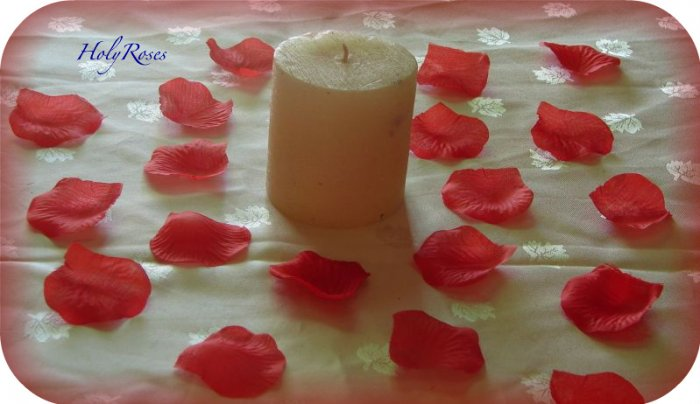1000 Red Silk Rose Petals (TL) Perfect for Valentine's Day