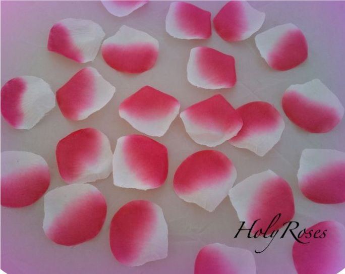 250 White / Fuscia Pink Two Tone Silk Rose Petals Weddings Crafts (Large)