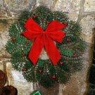 Y623 Crochet PATTERN ONLY Crochet Radiant Wreath Christmas Décor Pattern