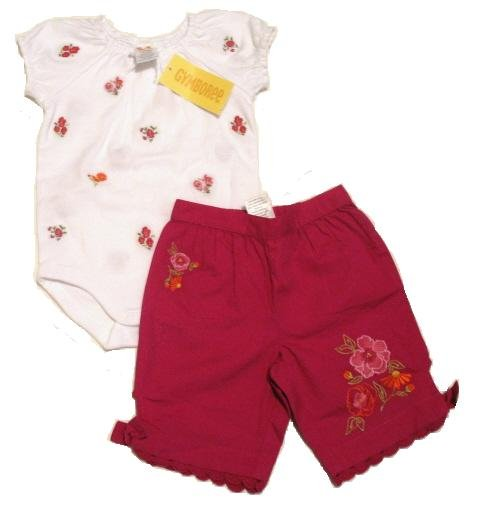 GYMBOREE Summer Bouquet Capri Pants Top Set 3-6 Mo NEW