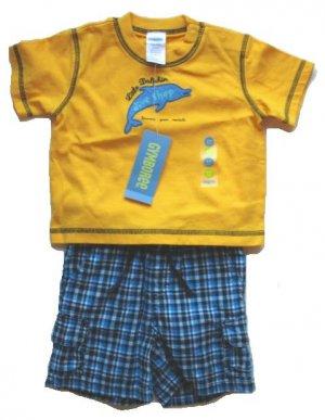 GYMBOREE Dive Shop Boys Shorts Dolphin T Shirt Outfit Set 3 6 Mo NEW $31