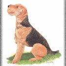 Airedale Terrier dog canvas art print