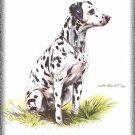 Dalmatian dog canvas art print