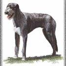 Deerhound Dog canvas art print