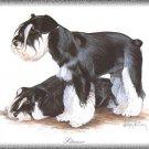 Schnauzer Standard dog canvas art print