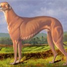 Greyhound 1881 dog canvas art print by Cassells The Book of the Dog