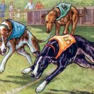 Greyhounds II dog canvas art print by Kamerad Hund