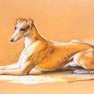 Greyhound dog canvas art print by Frank Paton