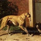 Greyhound and Shepherd dog canvas art print by Conradyn Cunaeus