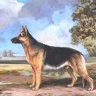 German Shepherd dog canvas art print by Reuben Ward Bink