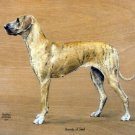 Great Dane dog canvas art print by Geoffrey Williams