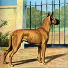 Great Dane dog canvas art print by Edwin Megargee