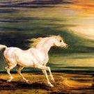 Marengo white horse animal landscape canvas art print by James Ward