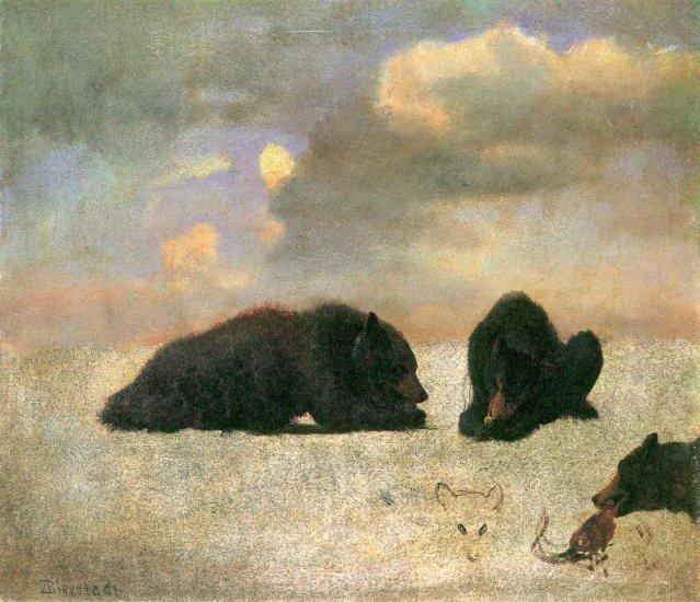 Grizzly Bears American wild animals canvas art print by Albert Bierstadt