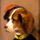 Comical Dog I canvas fine art print by Cirans