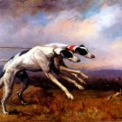 In the Slips 1900 Greyhounds dogs canvas fine art print by Maud A Earl