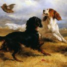 Setters Putting up Partridge dogs canvas art print by Edwin Douglas