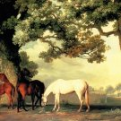 Mares and Foals Beneath Trees horses canvas art print Stubbs X-Large