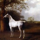 White Horse in Pasture landscape canvas art print by Agasse