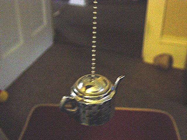 Stainless Steel Teapot Tea Strainer at Periwinkles #300935