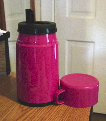 Fushia 8 Ounce Insulated Thermos Bottle by Aladdin #301321