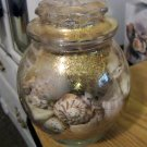 Gold Spotted Apothecary Jar of Random and Varied Sized Seashells   #301719
