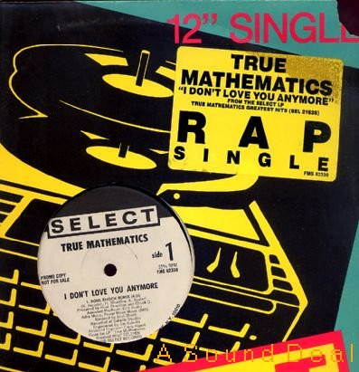 "TRUE MATHEMATICS '89 NM DJ 12"" I DON'T LOVE YOU ANYMORE"