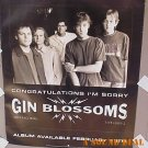 GIN BLOSSOMS Congratulations I'm Sorry '96 Promo POSTER
