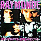 "Raymonde DEstination Breakdown 12"" RARE '88 original UK picture sleeve HEAR"