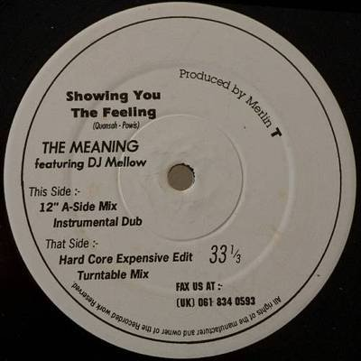 "MEANING ft DJ MELLOW Showing You the Feeling 12""HEAR Merlin T UK trip-hoP scarce"