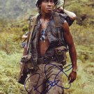 Brandon T. Jackson in-person autographed photo