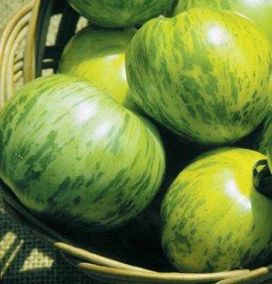 Organic Heirloom Green Zebra Tomato 50+ Seeds