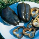 Organic Heirloom Sweet Chocolate Bell Pepper 20+ Seeds