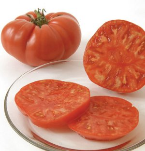 Organic Heirloom Red Brandywine Tomato 30 seeds freeship