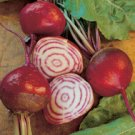 Organic Heirloom Chioggia Beet 50 Seeds Free Shipping